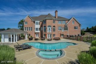 22730 Hillside Circle, Leesburg, VA 20175 (#LO9754948) :: Pearson Smith Realty