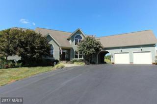 37852 Piggott House Place, Purcellville, VA 20132 (#LO9766710) :: Pearson Smith Realty