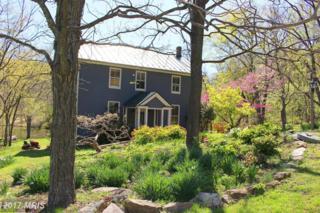 13722 Hiddenhollow Lane, Leesburg, VA 20176 (#LO9775369) :: LoCoMusings