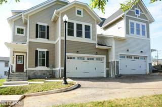 43745 Sweet Goldenrod Square Two, Ashburn, VA 20147 (#LO9794823) :: LoCoMusings