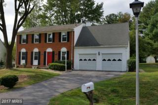 18633 Hedgegrove Terrace, Olney, MD 20832 (#MC9799685) :: Pearson Smith Realty