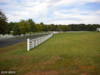 Meadowland Drive, Locust Grove, VA 22508 (#OR8271164) :: Pearson Smith Realty