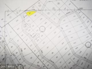 Off Cross Creek, Luray, VA 22835 (#PA7825058) :: LoCoMusings