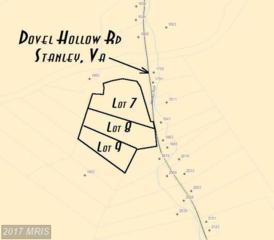1986 Dovel Hollow Road, Stanley, VA 22851 (#PA7985116) :: LoCoMusings