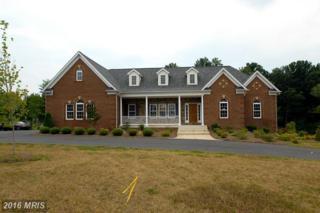 7301 Chestnut Meadow Court, Manassas, VA 20112 (#PW8337462) :: Pearson Smith Realty