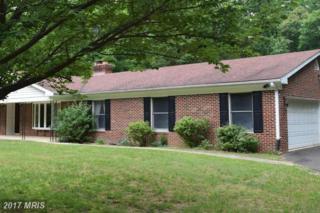 11549 Occoquan Oaks Lane, Woodbridge, VA 22192 (#PW9673783) :: Pearson Smith Realty