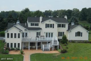 16616 Gaines Road, Broad Run, VA 20137 (#PW9794651) :: Pearson Smith Realty