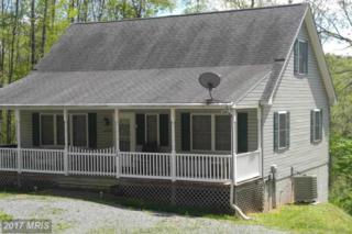 36 Pine Way, Mount Jackson, VA 22842 (#SH9622895) :: Pearson Smith Realty