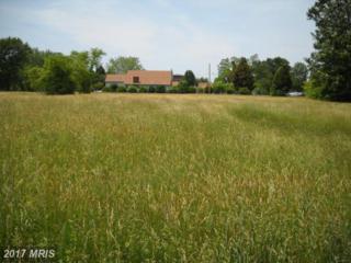 Fielding Drive, Bushwood, MD 20618 (#SM7339969) :: Pearson Smith Realty