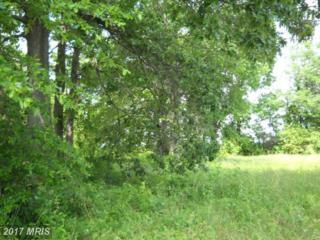 Springdale Drive, Bushwood, MD 20618 (#SM7340003) :: Pearson Smith Realty