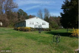 23034 Meadow Road, Bushwood, MD 20618 (#SM9744067) :: Pearson Smith Realty
