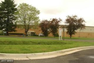3591 Lee Hill Drive, Fredericksburg, VA 22408 (#SP7103606) :: LoCoMusings