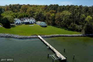 9355 Teal Court, Saint Michaels, MD 21663 (#TA9649826) :: Pearson Smith Realty