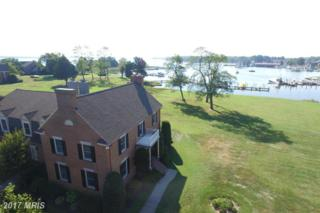 246 Perry Cabin Drive, Saint Michaels, MD 21663 (#TA9755304) :: Pearson Smith Realty