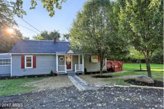 19625 Yarrowsburg Road, Knoxville, MD 21758 (#WA9779963) :: Pearson Smith Realty