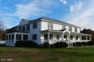 168 Church Point Lane, Colonial Beach, VA 22443 (#WE8211941) :: LoCoMusings