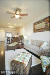 103 N Irving Avenue #503, Colonial Beach, VA 22443 (#WE8697654) :: Pearson Smith Realty