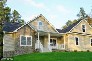 3289 Rivermont Drive, Front Royal, VA 22630 (#WR9796319) :: Pearson Smith Realty
