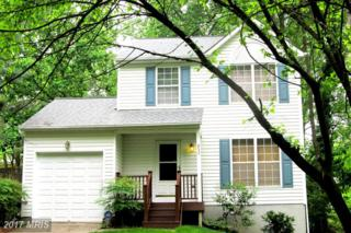 852 Wilson Road N, Arnold, MD 21012 (#AA9009847) :: Pearson Smith Realty