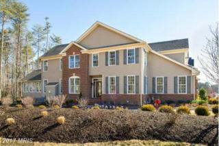 8127 Orchard Blossom Lane, Severn, MD 21144 (#AA9742585) :: Pearson Smith Realty