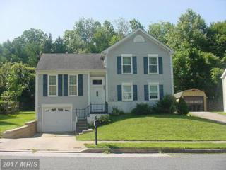 9945 Britinay Lane, Baltimore, MD 21234 (#BC9712552) :: Pearson Smith Realty