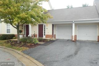 12 Joanna Court #12, Pikesville, MD 21208 (#BC9759212) :: Pearson Smith Realty