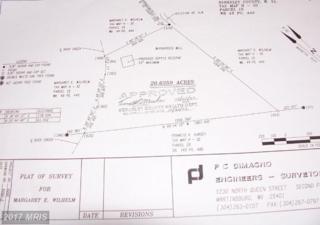 0 Dry Run Rd, Hedgesville, WV 25427 (#BE7820524) :: LoCoMusings
