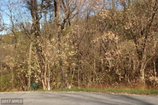 0 Culpepper, Falling Waters, WV 25419 (#BE8212397) :: Pearson Smith Realty