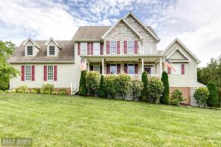 378 Hadley Drive, Falling Waters, WV 25419 (#BE9687819) :: Pearson Smith Realty