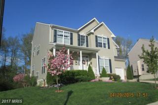 157 Thomas Jefferson Terrace, Elkton, MD 21921 (#CC9565839) :: Pearson Smith Realty