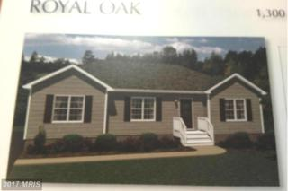 Holly Lane, Greensboro, MD 21639 (#CM8422408) :: Pearson Smith Realty