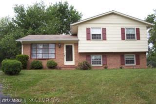 5 Jaybee Court, Fredericksburg, VA 22401 (#FB8200772) :: Pearson Smith Realty