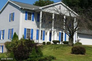 11361 Hearthwood Drive, Waynesboro, PA 17268 (#FL9739697) :: Pearson Smith Realty