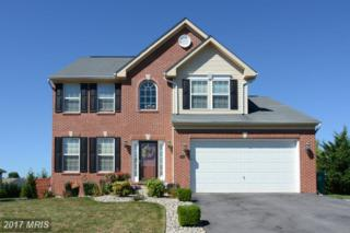 2941 Constellation Drive, Chambersburg, PA 17202 (#FL9762091) :: LoCoMusings