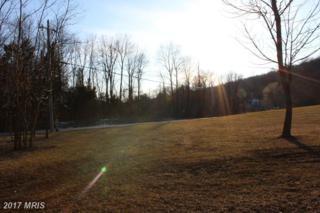 8716 Hampton Valley Road, Emmitsburg, MD 21727 (#FR8554216) :: Pearson Smith Realty