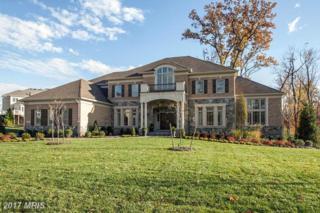 1053 Hanchel Terrace, Great Falls, VA 22066 (#FX9722841) :: Pearson Smith Realty