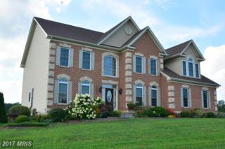 2003 Georgeanna Court, Jarrettsville, MD 21084 (#HR9745212) :: Pearson Smith Realty