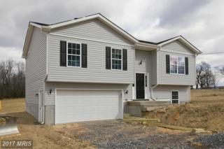 Hampshire House Drive, High View, WV 26808 (#HS9821513) :: Pearson Smith Realty