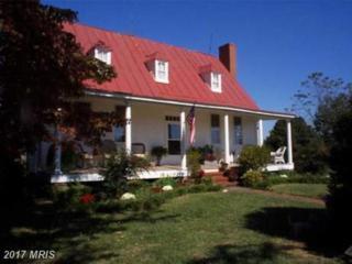 341 Bear Castle Drive, Bumpass, VA 23024 (#LA8188205) :: Pearson Smith Realty