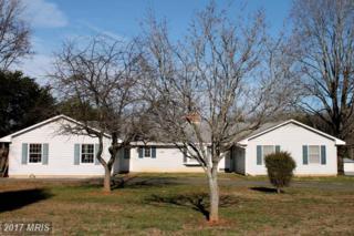 77 Lake Anna Drive, Bumpass, VA 23024 (#LA8629231) :: Pearson Smith Realty