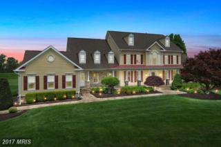 17055 Spring Creek Lane, Leesburg, VA 20176 (#LO9646440) :: Pearson Smith Realty