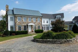 40515 Browns Lane, Waterford, VA 20197 (#LO9756821) :: Pearson Smith Realty
