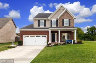 14704 Saddle Creek Drive, Burtonsville, MD 20866 (#MC9737726) :: Pearson Smith Realty