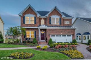 13423 Redspire Drive, Silver Spring, MD 20906 (#MC9783581) :: Pearson Smith Realty