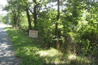 Laurel Avenue, Berkeley Springs, WV 25411 (#MO8006035) :: Pearson Smith Realty