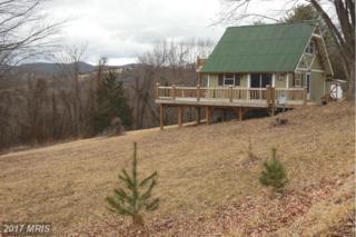 1063 Overlook Mountain Road, Elkton, VA 22827 (#PA8571332) :: LoCoMusings