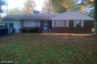 9601 Massie Drive, Clinton, MD 20735 (#PG8477648) :: Pearson Smith Realty