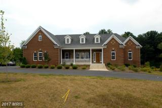 7301 Chestnut Meadow Court, Manassas, VA 20112 (#PW8337462) :: Pearson Smith Realty