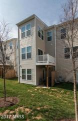 17130 Gibson Mill Road #21, Dumfries, VA 22026 (#PW9599259) :: Pearson Smith Realty