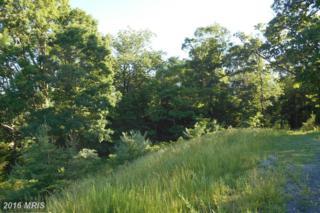 LOT 34 Savanna Drive, Strasburg, VA 22657 (#SH8278338) :: Pearson Smith Realty